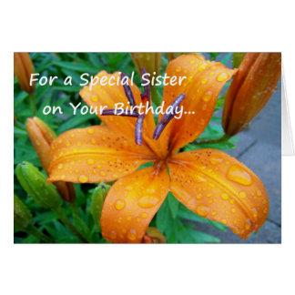 Cartão Para uma irmã especial em seu aniversário…