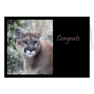 Cartão Parabéns do puma
