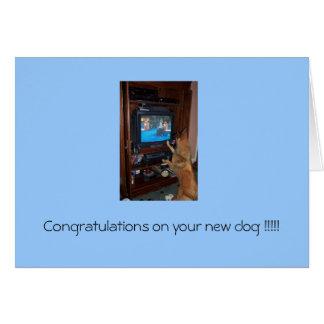 Cartão Parabéns em seu cão novo!!!