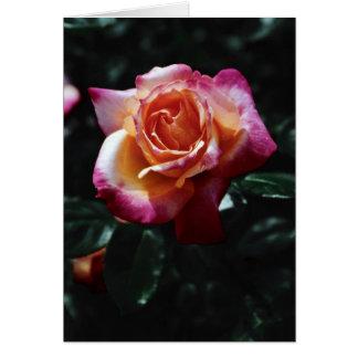 Cartão Pare e cheire os rosas