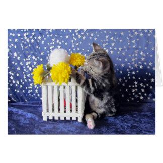 Cartão Pare e jogue com as flores (Lilo)