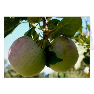 Cartão Pares de maçãs
