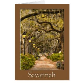 Cartão Parque de Forsyth - savana, GA