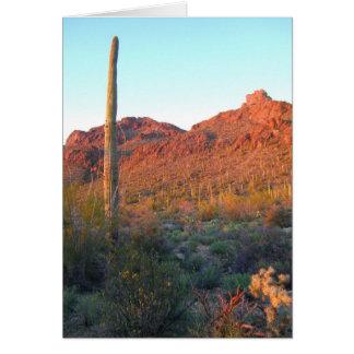 Cartão Parque nacional de Saguaro