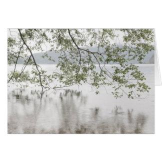 Cartão Parque nacional olímpico do crescente | do lago,