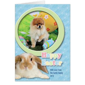 Cartão Páscoa - Pomeranian - Dexter