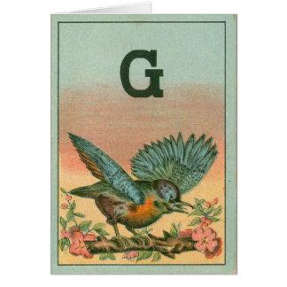Cartão pássaro azul g