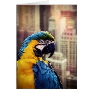 Cartão Pássaro na cidade