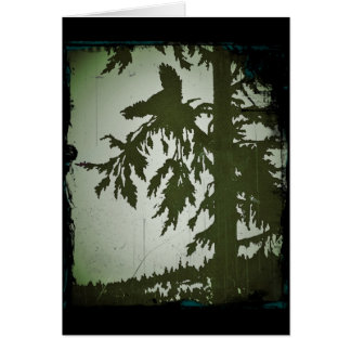 Cartão Pássaro que grita em uma árvore