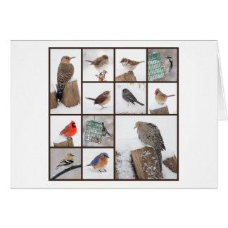 Cartão Pássaros do quintal na neve