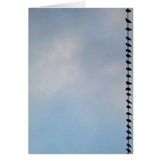 Cartão Pássaros, San Francisco