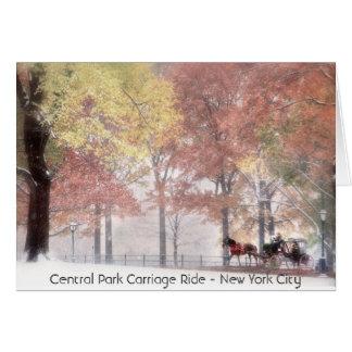 Cartão Passeio da carruagem do Central Park - New York