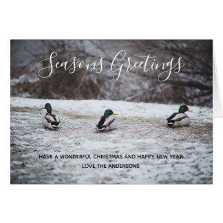 Cartão Patos na foto do Natal da neve do inverno