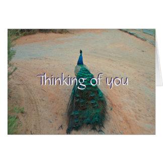 Cartão Pavão ausente da caminhada - pensando de você