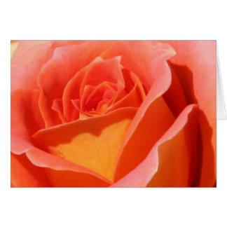 Cartão Peachy do rosa alaranjado e amarelo