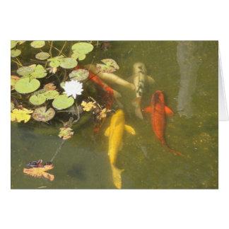 Cartão Peixes de Koi com lírio em uma lagoa
