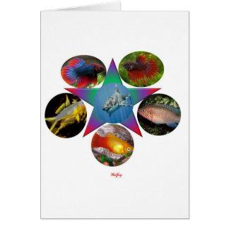 Cartão peixes, peixe dourado, carpa, pesca, mar, oceano,