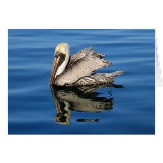 Cartão Pelicano de flutuação