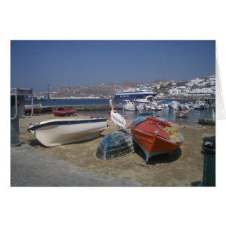 Cartão Pelicano e barcos