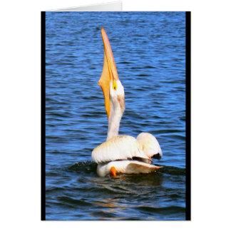 Cartão Pelicano eu desejo-lhe o feliz aniversario?