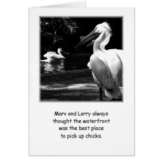 Cartão Pelicanos cómicos