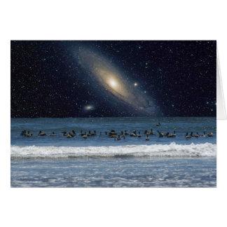 Cartão Pelicanos e galáxia do Andromeda