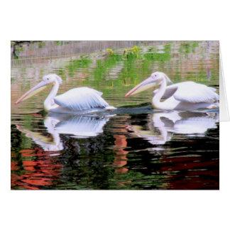 Cartão Pelicanos que nadam em um lago