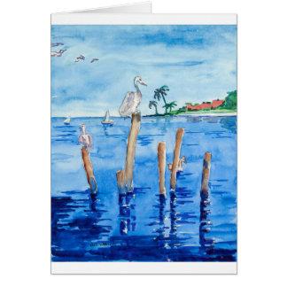 Cartão Pelicanos tropicais