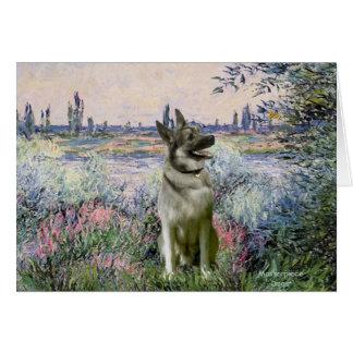 Cartão Pelo Seind - o Norwiegian Elkhound