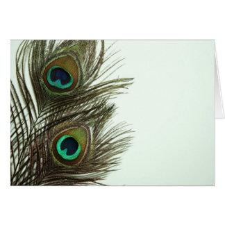 Cartão Pena Notecard do pavão