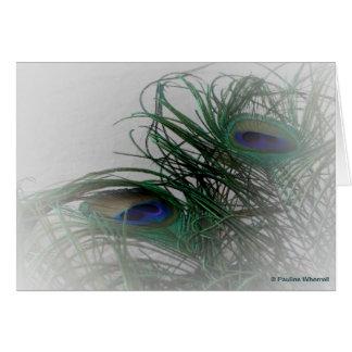 Cartão Penas à moda pálidas do pavão do © P Wherrell