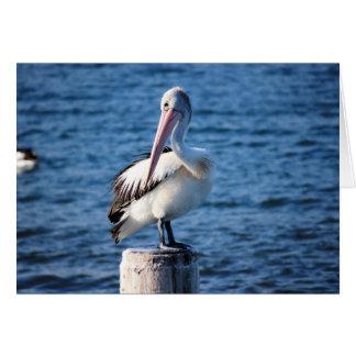 Cartão Penas de pássaros grandes do mar do oceano das ave