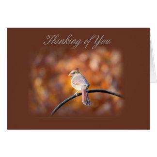 Cartão Pensamento cardinal de você