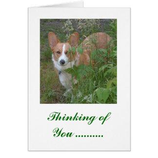 Cartão Pensamento de você…