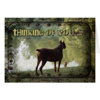 Cartão Pensamento de você - Doberman que negligencia um