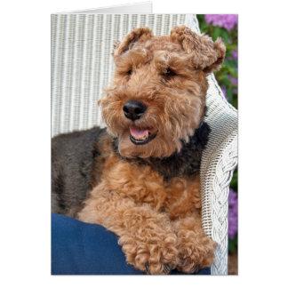 Cartão pensamento de você-Galês Terrier na cadeira de