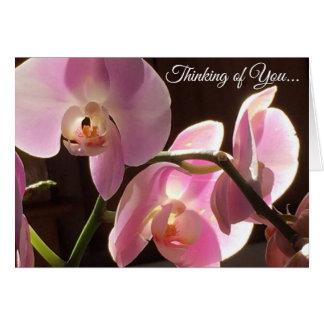 Cartão Pensamento de você vazio da orquídea do rosa