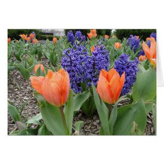 Cartão Pensando de você, de tulipas & de jacintos