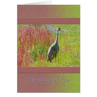 Cartão Pensando de você, guindaste de Sandhill, campo das