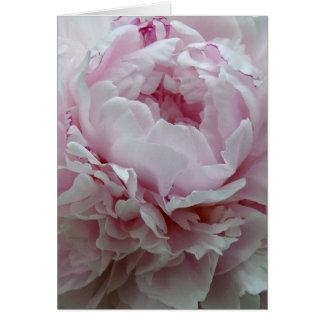 Cartão Peônia cor-de-rosa macia