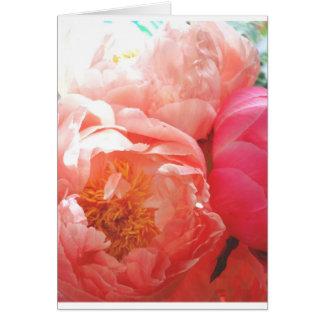 Cartão Peônias cor-de-rosa -- bonito no rosa!