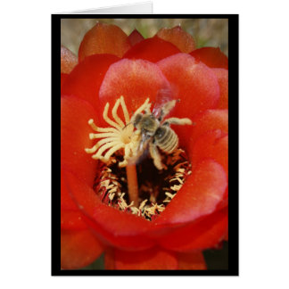 Cartão Pequeno almoço da abelha