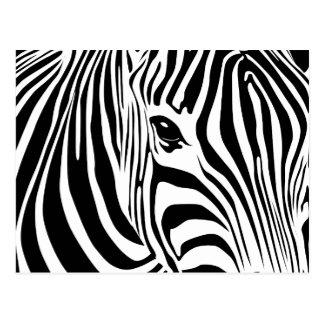 Cartão pequeno da zebra
