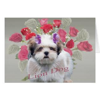 Cartão pequeno dos rosas de cão do leão de Lowchen
