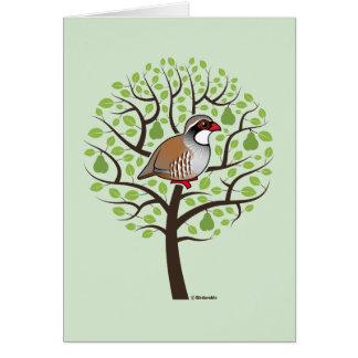 Cartão Perdiz em uma árvore de pera