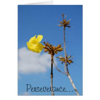 Cartão Perseverança