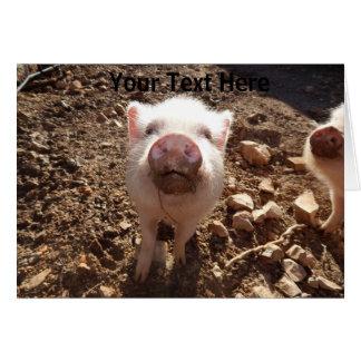 Cartão personalizado do porco do Snout sujo mini