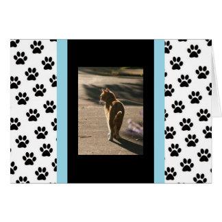 Cartão Pesaroso para sua perda (gato)