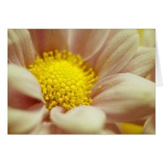 Cartão Pêssego delicado e flor amarela