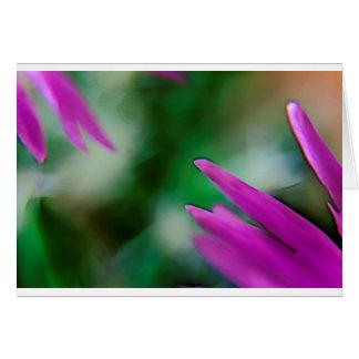 Cartão Pétalas cor-de-rosa do cacto